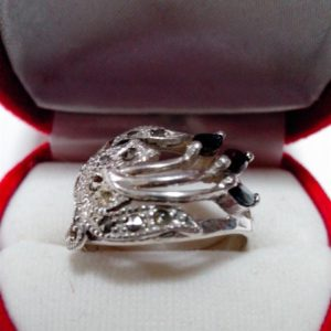 แหวนเงินแมกกาไซค์